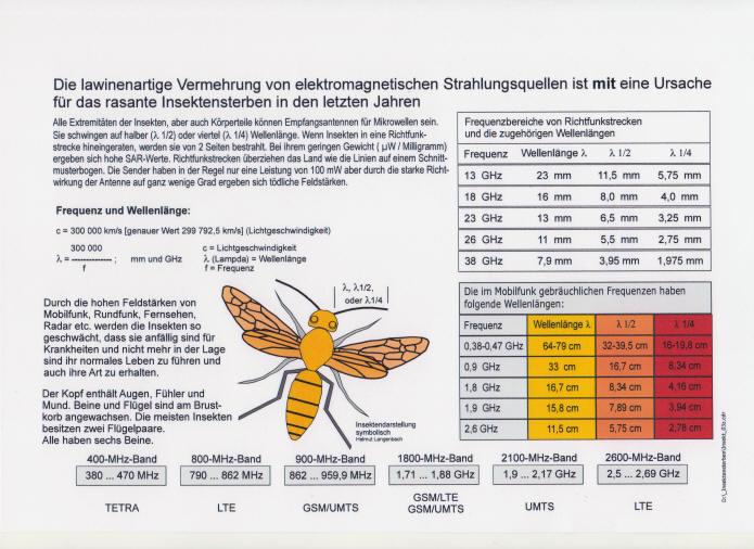 Strahlung-gratis nein Danke: Mikrowellen Gefahren für die Gesundheit